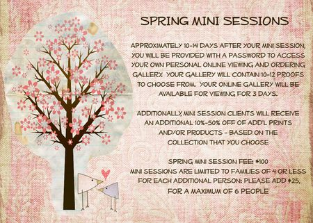Spring 09 session info2