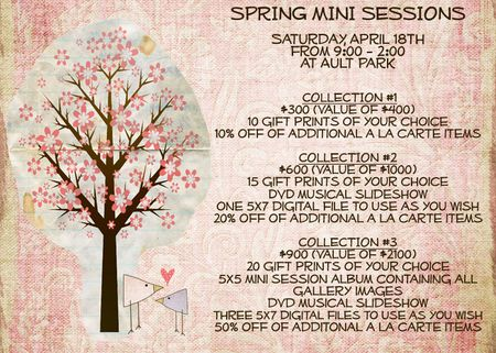 Spring 09 session info